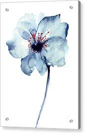 Decorative Blue Flower, Watercolor Acrylic Print