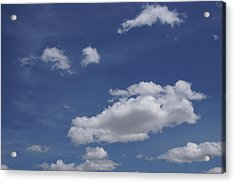 Deep Blue Sky And Fluffy Cumulous Cloud Acrylic Print