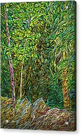 Acrylic Print featuring the digital art Deep Forest Portal by Joel Bruce Wallach