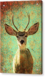 Deers Ears Acrylic Print