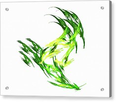 Deluxe Throwing Star Green Acrylic Print