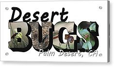 Desert Bugs Big Letter Acrylic Print