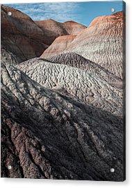 Desert Coral Acrylic Print