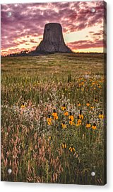 Acrylic Print featuring the photograph Devil's Tower And Sunflowers by Chance Kafka
