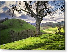 Diablo Winter Hills Acrylic Print by Vincent James