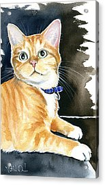 Diego Ginger Tabby Cat Painting Acrylic Print