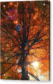 Digital Painting Of Autumn Tree And Red Acrylic Print