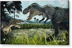 Dinosaur Scene Of The Two Dinosaurs Acrylic Print