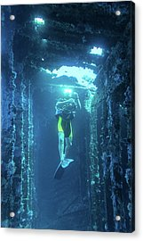 Diver In The  Acrylic Print