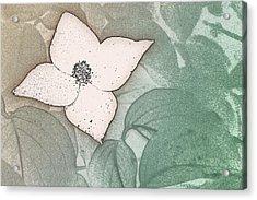 Dogwood Flower Stencil On Sandstone Acrylic Print