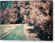 Down The Road Acrylic Print