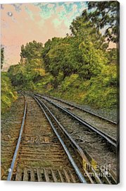 Acrylic Print featuring the photograph Down The Track by Leigh Kemp