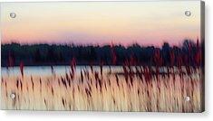 Dreams Of Nature Acrylic Print