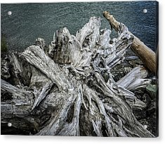 Acrylic Print featuring the photograph Driftwood by Mark Duehmig