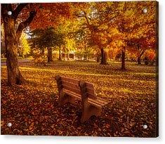 Acrylic Print featuring the photograph Drury Autumn Color by Allin Sorenson
