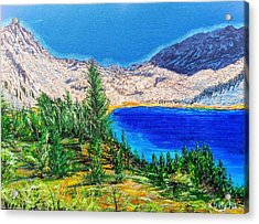 Acrylic Print featuring the painting Duck Pass by Kevin Daly