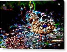 Ducks On Shore Wizard Acrylic Print