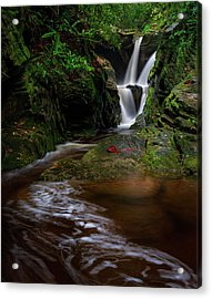 Duggers Creek Falls - Blue Ridge Parkway - North Carolina Acrylic Print