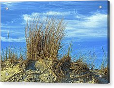 Acrylic Print featuring the photograph Dune Grass In The Sky by Bill Swartwout Fine Art Photography