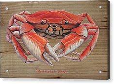 Dungeness Crab Acrylic Print