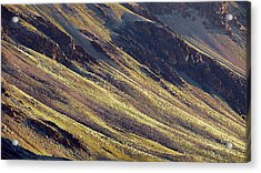 Acrylic Print featuring the photograph Early Morning Light On The Hillside In Sarchu by Whitney Goodey