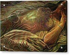 Earth Evening Acrylic Print