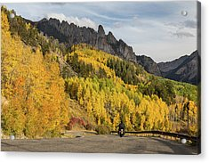 Acrylic Print featuring the photograph Easy Autumn Rider by James BO Insogna