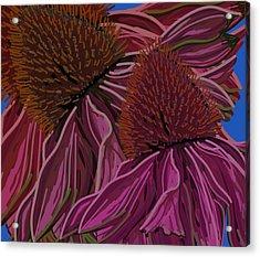 Echinacea Flower Blues Acrylic Print