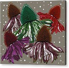 Echinacea Flowers Dance Acrylic Print