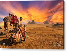 Egypt. Cairo - Giza. General View Of Acrylic Print