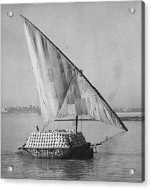 Egyptian Felucca Acrylic Print