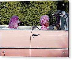 Elderly Woman And Pink Poodle In Pink Acrylic Print by Tim Macpherson