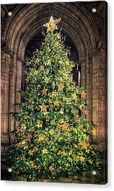 Ely Cathedral Christmas Tree 2018 Acrylic Print