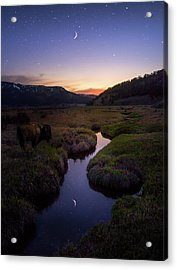 Enchanting Yellowstone / Yellowstone National Park  Acrylic Print