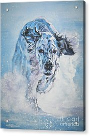 English Setter Running Acrylic Print
