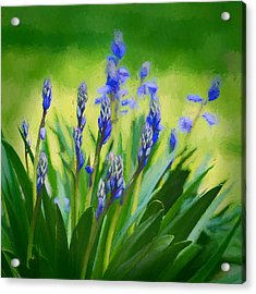 Essense Of Spring Acrylic Print