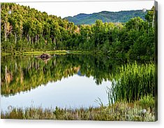 Acrylic Print featuring the photograph Evening At Ivie Pond by TL Mair
