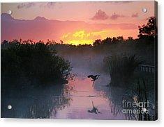 Everglades National Park At Sunrise Acrylic Print