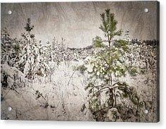 Fairytale Of Winter Forest. Shchymel, 2018. Acrylic Print