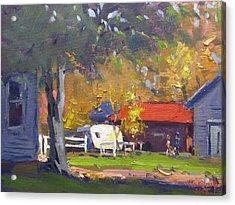 Fall At My Neighborhood Acrylic Print