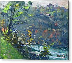Fall At Niagara Gorge Acrylic Print