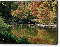 Acrylic Print featuring the photograph Fall At The Japanese Garden by Ricardo J Ruiz de Porras