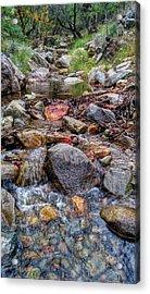 Fall Colors At Madera Creek Acrylic Print