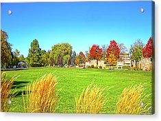 Acrylic Print featuring the photograph Fall Colors In Boise, Idaho by Dart and Suze Humeston