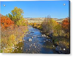 Acrylic Print featuring the photograph Fall Foliage In Idaho by Dart and Suze Humeston