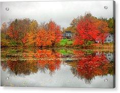 Fall Foliage In Rural New Hampshire Acrylic Print