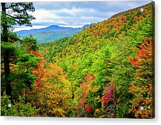 Acrylic Print featuring the photograph Fall In The Smokies by Andy Crawford