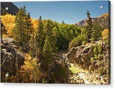 Fall On Independence Pass Acrylic Print