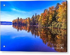 Fall Trees With Reflection Acrylic Print