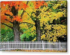 Falls Colors In New Hampshire Acrylic Print